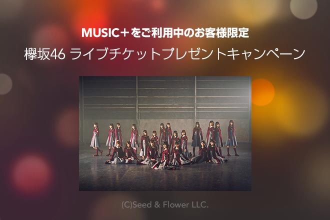 欅坂46ライブチケットプレゼント