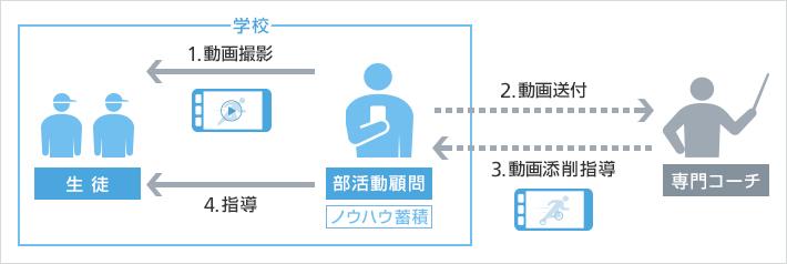 softbank_bukatsu
